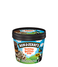 Ben and Jerry's minibegre